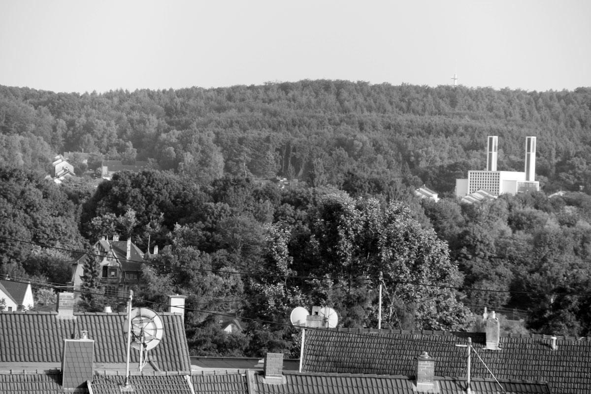 Suchbild Nummer 29: Blick auf St. Bonifatius von den Kurzen Rödern aus.