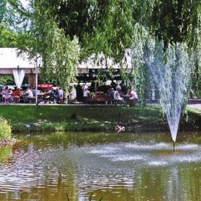 Sommerszene im Stadtpark Dudweiler