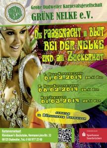 Plakat der Grünen Nelke zur Session 2013/14 (Foto: Verein)