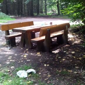 Zugemüllte Waldbank (Foto: Leserfoto)