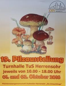 Plakat Pilzausstellung 2016