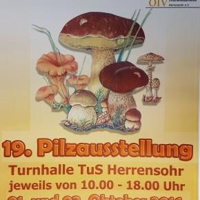 19. Große Pilzausstellung am 01. und 02. Oktober 2016 in Herrensohr