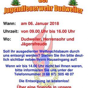 Jugendfeuerwehr Dudweiler – Tannenbaumsammelaktion