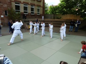 Ju-Jutsu-Kämpfer bei ihrer Darbietung (Foto: Förderverein Turmschule/privat)