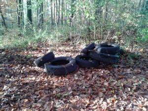 Entsorgte Altreifen im Wald nahe des Neuhauser Wegs (Foto: privat)