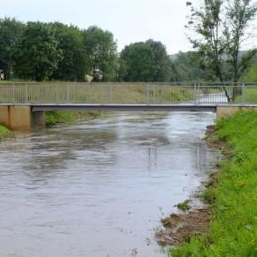 Hochwasser im Wiesental (Foto: Lieven Litaer)