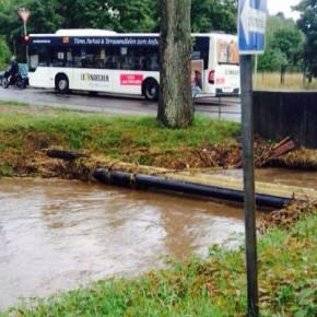 Herrensoher Weg (Foto: Christian Weirich)