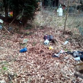 Müll (Foto: Leserfoto)